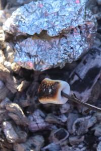 Hajkknyte och marshmallow
